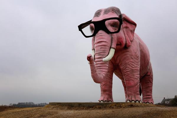 Pinkie Hipster Elephant
