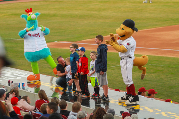 timber rattlers birthday party