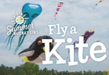 kite festivals northeast wisconsin