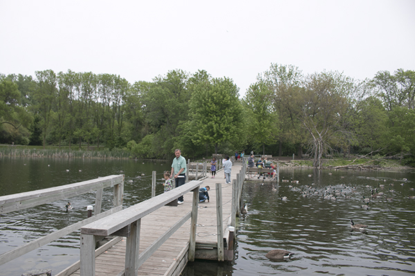 Bay Beach Wildlife Sanctuary, Green Bay