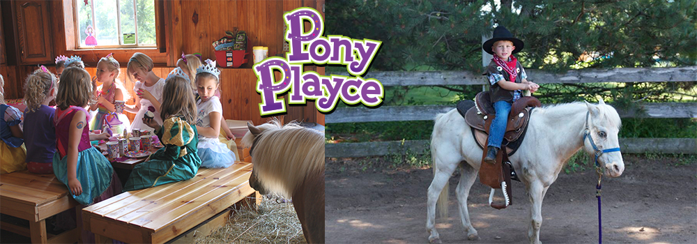 Pony Playce Birthdays