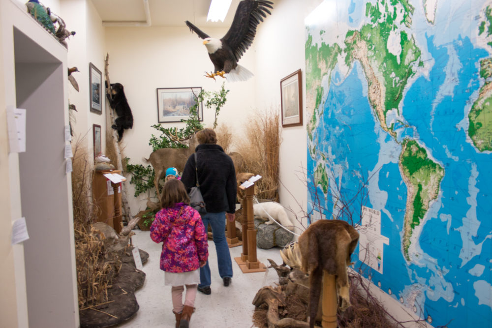 Wisconsin Museum of International Wildlife