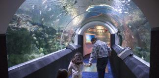 Discovery World Milwaukee