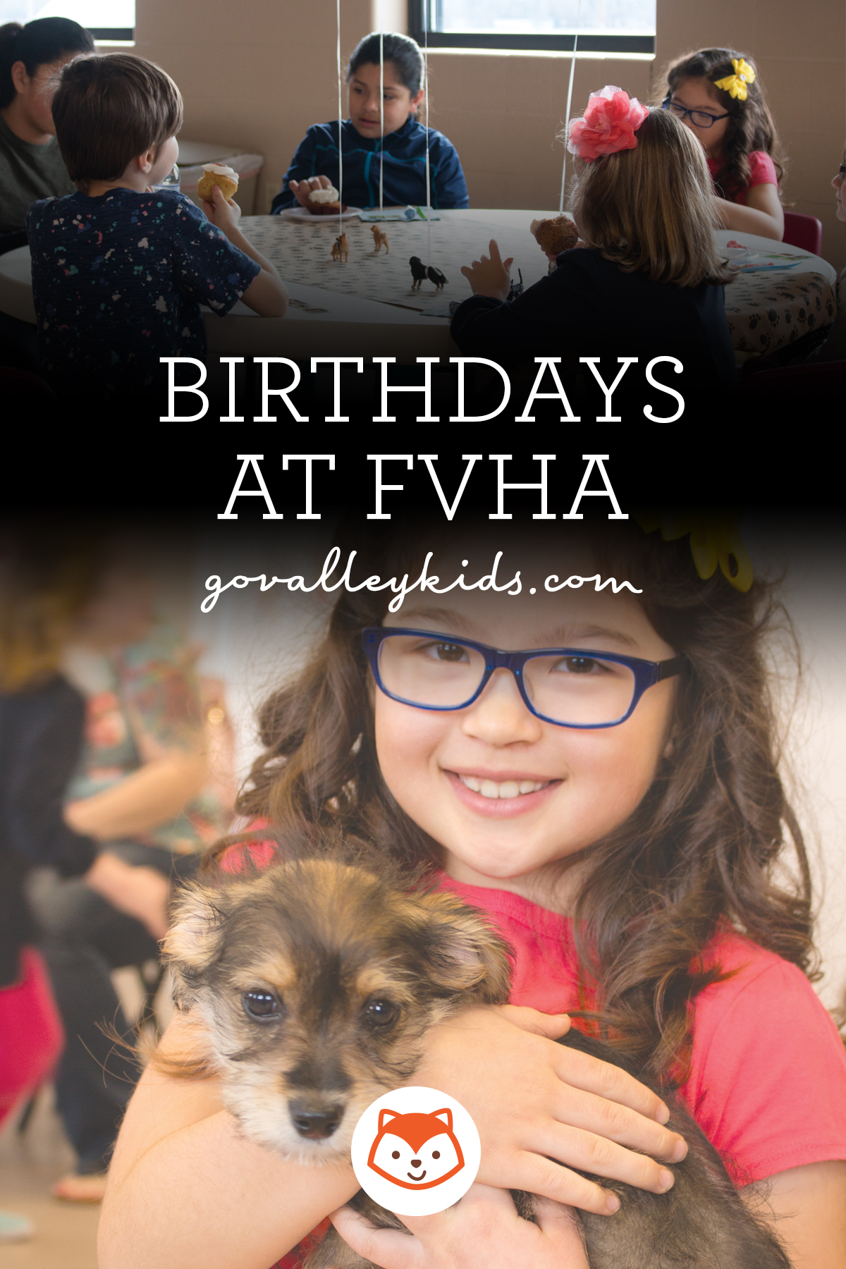 FVHA Birthday Parties