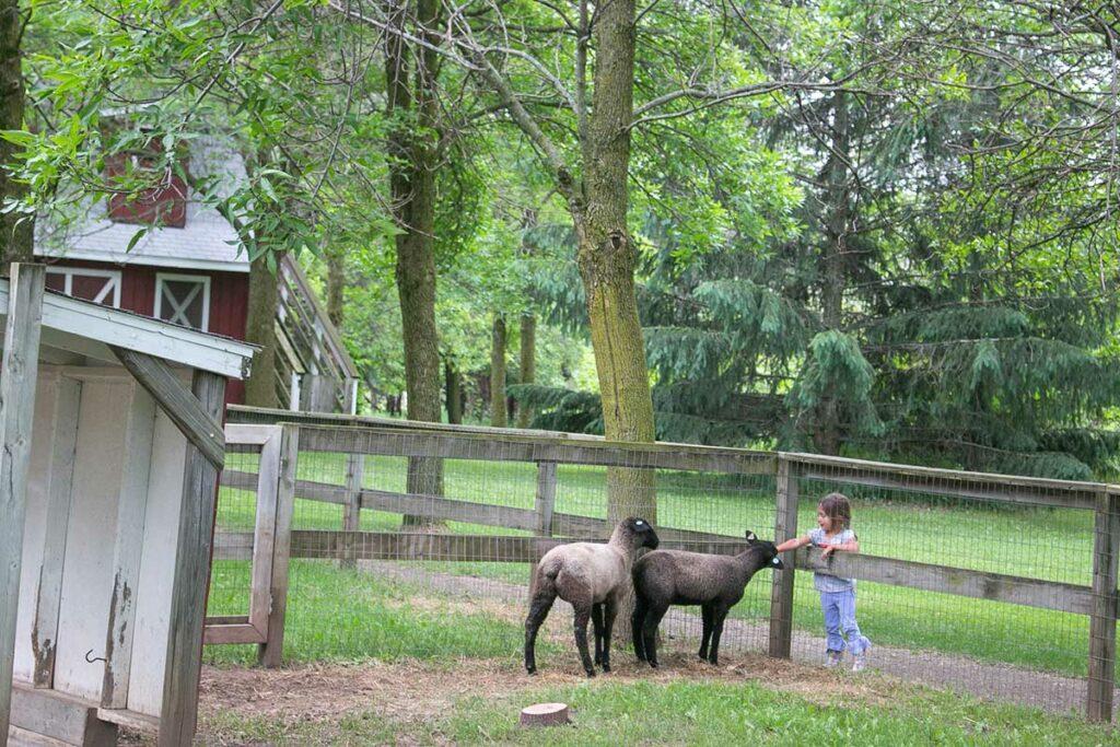 Plamann Park Appleton Farm