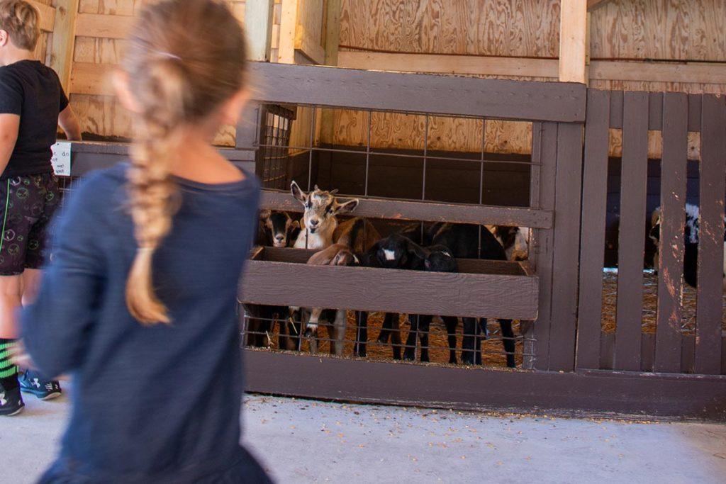 The Farm Door County