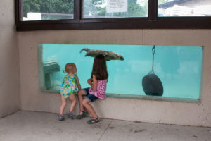 Menominee Park Zoo in Oshkosh