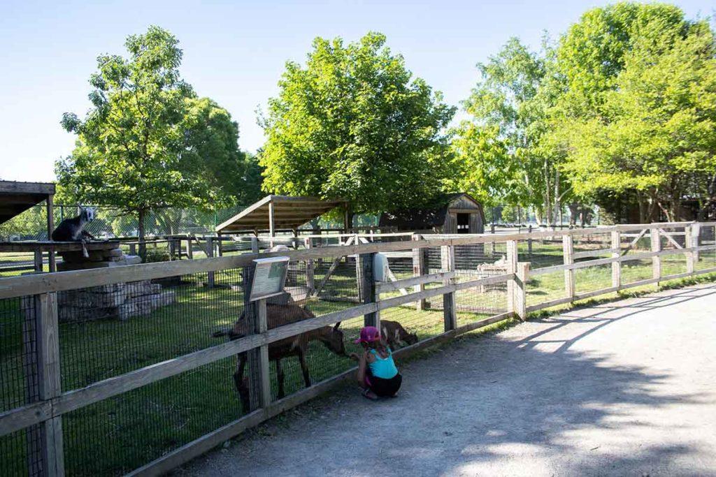 Menominee Park Zoo in Oshkosh