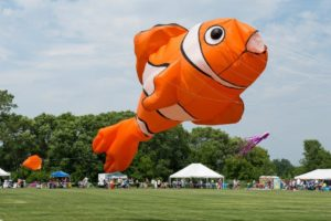 Fly a Kite Fest Green Bay