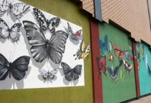 Murals in Appleton Wisconsin