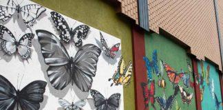 Murals in Appleton Wisconsin