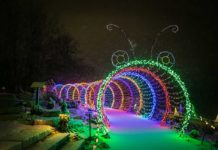Christmas Lights in Green Bay