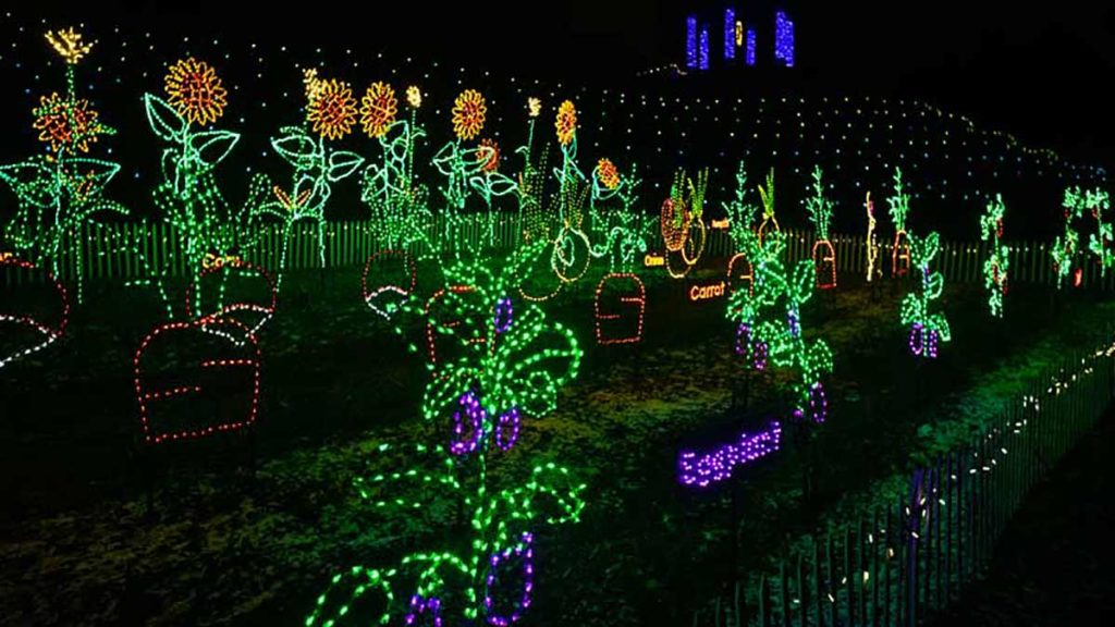 Garden of Lights Green Bay