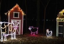Fox Cities Festival of Lights