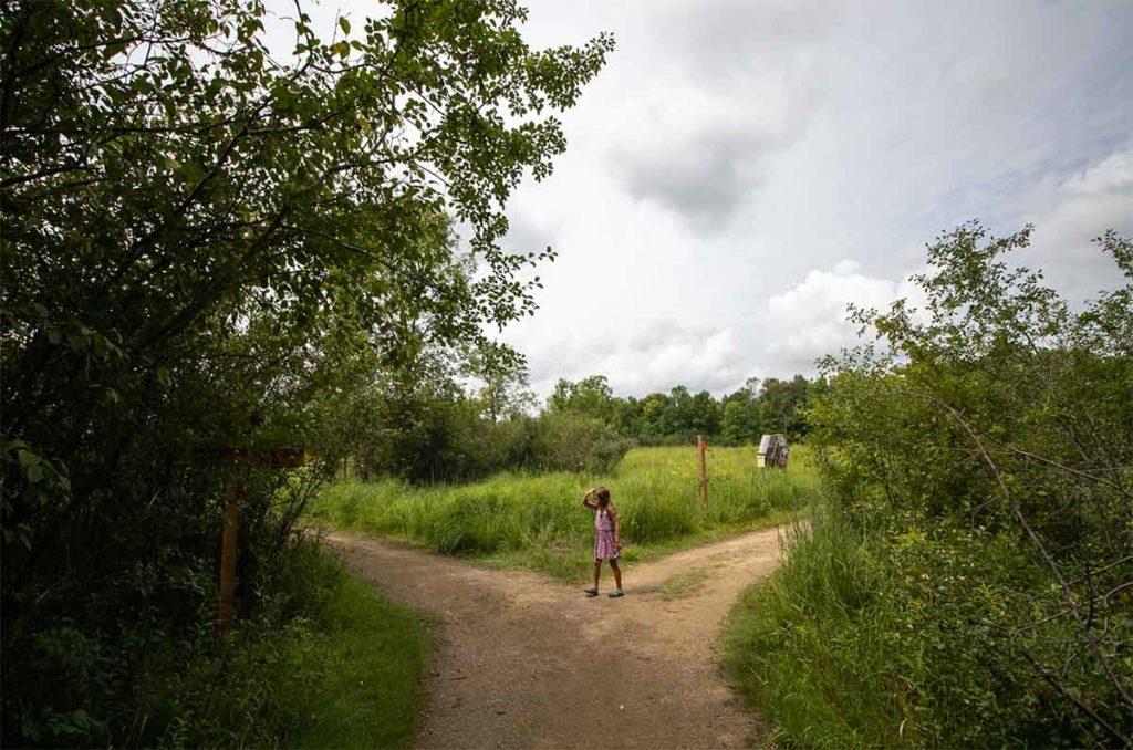 Buboltz Nature Preserve Appleton