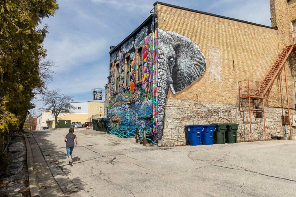 Elephant Mural by Andrew Linskens De Pere Wisconsin