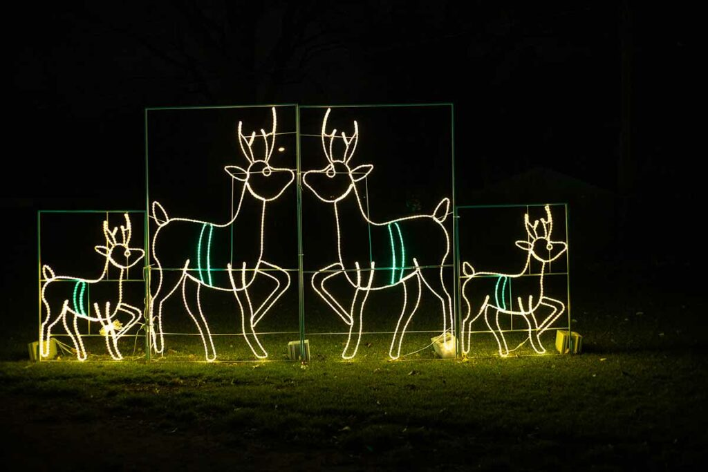 Santa's Rock N Lights, Green Bay Christmas Lights