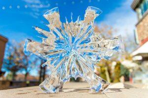 Appleton Ice Sculptures